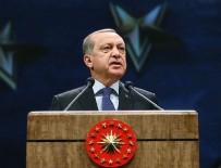 Cumhurbaşkanı Erdoğan: Bu olayı ortaya çıkaran buradaki bir büyükelçidir