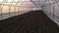 YEŞILDERE - Manisalı Çiftçiler Desteklerle Kurdukları Serada Üretim Yapıyor