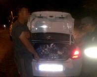 Milas'ta Kaçak Avcılığa Şok Baskın