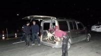 RUHSATSIZ SİLAH - Bodrum'da Huzur Operasyonu