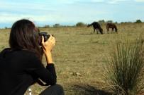 YUSUF ZIYA YıLMAZ - 'Fotoğraf Avcılarına Rastgele'