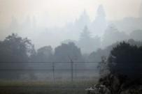 KALIFORNIYA - Kaliforniya'da Orman Yangını Sürüyor