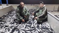 Karadeniz'de Palamut Ve İstavrit Bereketi