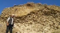 KURUCUOVA - Koyun Otlatırken Şapel Bulan Çoban 2 Bin Yıllık Tarihi Kurtardı