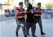 GÜZELBAĞ - Ormanı Uyuşturucu Tarlasına Çeviren Karı-Koca Yakalandı