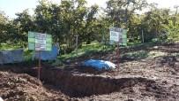 Bahçe Uygulamaları Ve Çiftçi Eğitimleri Verim İle Kaliteyi Arttırıyor