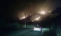 İLK MÜDAHALE - Bodrum'da orman yangını