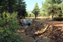 ORMAN İŞLETME MÜDÜRÜ - Orman Yollarına Kış Bakımı Yapıldı