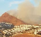 İLK MÜDAHALE - Bodrum'daki Yangın Kontrol Altına Alındı