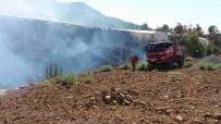 Bozyazı'da 4 Dönüm Muz Serası Yandı