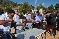 BILGIHAN BAYAR - Doğantaş Bal Festivaline Yoğun İlgi