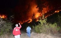 TAŞAĞıL - Manavgat'ta  Aynı Gece 5 Ayrı Orman Yangını