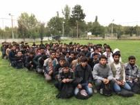 KAÇAK GÖÇMEN - Otobüsten 206 kaçak göçmen çıktı