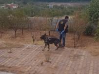 GAZIANTEP EMNIYET MÜDÜRLÜĞÜ - Polisten Uyuşturucu Baskını