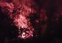 İLK MÜDAHALE - 8 Dönüm Ormanlık Alan Yandı