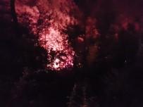 İLK MÜDAHALE - Adana'da Orman Yangını