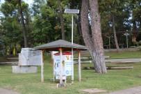 SERDENGEÇTI - Büyükşehir Sokak Hayvanlarına Sahip Çıkıyor