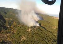 HELIKOPTER - İzmir'de Korkutan Orman Yangını