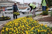 YOĞUN MESAİ - Sivas'ta Soğuğa Dayanıklı Çiçek Dikildi