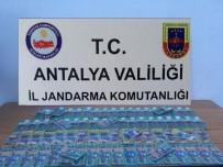 AVUSTURYA - Antalya'da Sahte Avusturya Doları Operasyonu