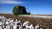 GÜMRÜK VERGİSİ - Doğru Açıklaması '1 Milyon Ton Pamuk Üretimi Hayal Değil'
