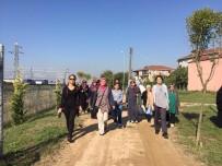 KİLO KONTROLÜ - Dünya Yürüyüş Gününde Kartepeli Kadınlar Bir Araya Geldi
