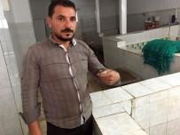 SALYANGOZ - Avrupa, Ergene'den Çıkan Kurbağa Bacaklarını Yemiyor