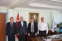 BASKETBOL TAKIMI - Bursa, Dünya Basketbol Şampiyonasına Hazırlanıyor
