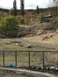 KENT ORMANI - Kars Kent Ormanı Kaderine Terk Edildi