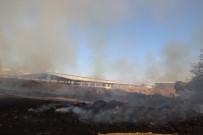 KONUKLU - Şanlıurfa'da Çıkan Yangında Tonlarca Saman Kül Oldu