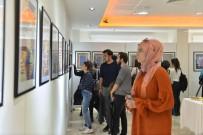 SAÜ'de 'Halı-Kilim Ana Sanat Dalı Tasarım' Sergisi