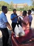 AVSALLAR - Araç Bagajında Satılan Balıklar İmha Edildi