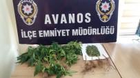 Avanos'ta Hin Keneviri Ele Geçirildi