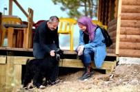 İZZETTIN KÜÇÜK - İnsanlık Köyü'nde Madde Bağımlıları Tedavi Edilecek