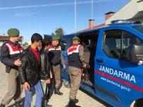 KAPAKLı - Afganistan Uyruklu 7 Kaçak İşçi Yakalandı
