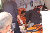 AMBULANS HELİKOPTER - Ambulans Helikopter Minik Irmak İçin Rize'den Samsun'a Havalandı