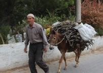 Aydın'da Köylüler Kış Hazırlıklarına Başladı