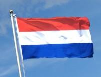HOLLANDA - Hollanda darbecilere kucak açtı
