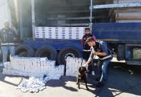 SIGARA - PKK'nın Para Kaynağına Darbe Açıklaması Irak'tan İstanbul'a Sevkiyatı