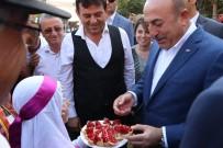 GÖKÇELER - Bakan Çavuşoğlu Açıklaması 'Çekirdeksiz Nar Emsalsiz Bir Ürün, Tüm Dünyaya Tanıtılması Gerekli'