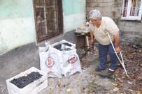 KAYNAR - Kömür Sobası Patladı Açıklaması 1 Yaralı