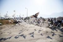 500 Güvercin, Dostluk İçin Havalandı