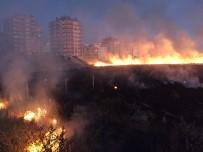 ALTINŞEHİR - Anız Yangını İkametlere Sıçramadan Söndürüldü