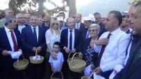 FEVZI ŞANVERDI - Karatay Açıklaması 'Zeytin Ömrü Uzatıyor'