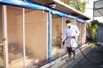 Sincan Belediyesi Sokak Hayvanlarına Sahip Çıkıyor