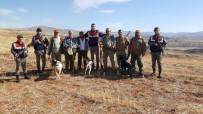 SİLAH RUHSATI - Sungurlu'da Jandarma Avcıları Denetledi