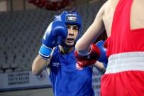 ERDEMIR - Avrupa Boks Şampiyonası'nın Üçüncü Gününde Üç Galibiyet