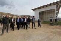AK PARTİ İL BAŞKANI - Bakan Ağbal Kaleardı Şehir Parkı'nda İncelemelerde Bulundu