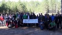 KURUCUOVA - Beyşehir Belediyesinden Doğa Yürüyüşü Etkinliği
