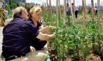 Çankaya'nın Kent Tarım Hobi Evi'nde Eğitim Alanların Sayısı Bini Buldu
